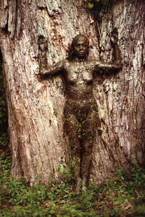 Ana Mendieta_Tree of Life (1977)
