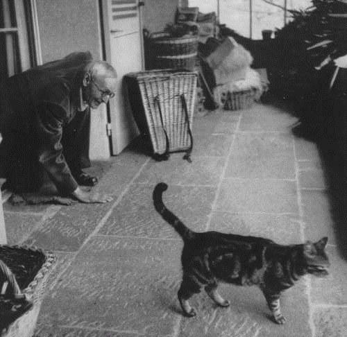 herman-hesse-cat