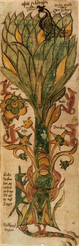 Yggdrasil_ manuscrito siglo XVII Islandia