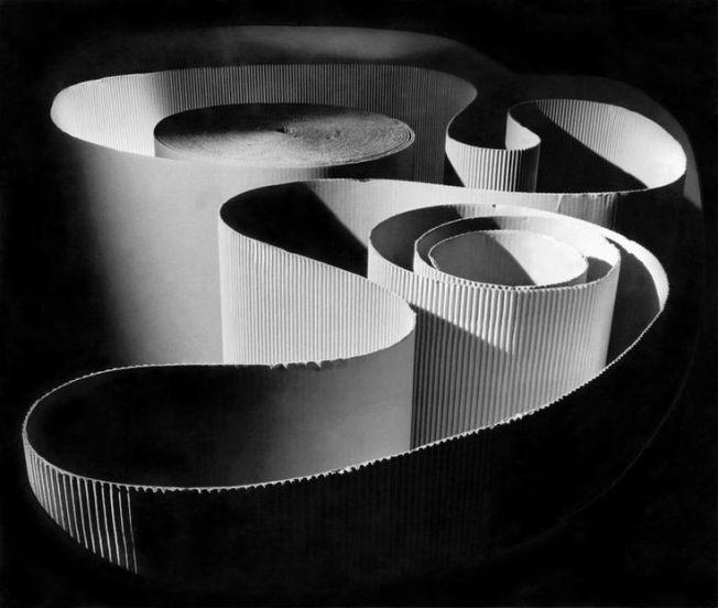 Herbert List- Curvature (1936)