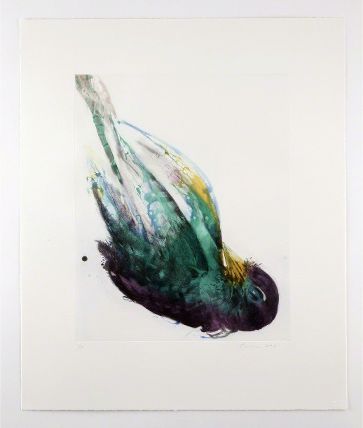 Emilie Clark- Untitled, 2014
