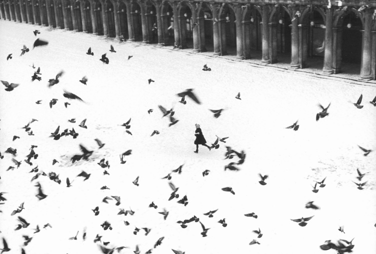 Gianni Berengo Gardin- Piazza San Marco, Venice, 1960