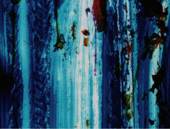 Ana Mendieta- Untitled, ca 1971 Still from super-8mm film transferred to high definition digital media, color, silent