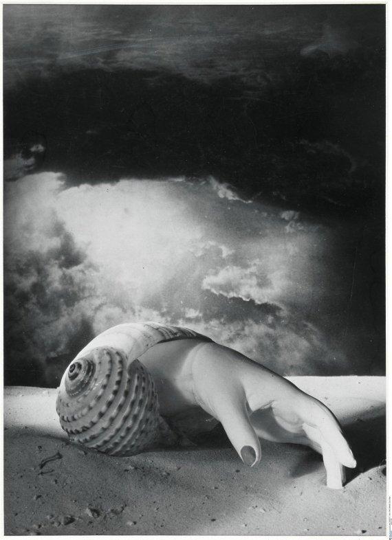 Dora Maar, Sans Titre (Main-coquillage), 1934